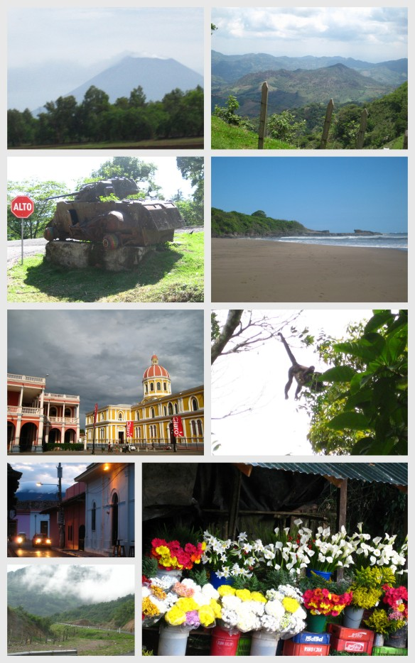 nicaragua, travel, central america, flowers, beach, monkey, jinotega