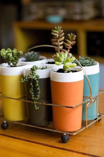miniature garden mini petite indoor kitchen potted plants
