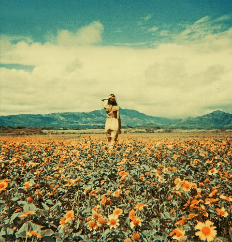 look ahead, move forward, future, field of flowers