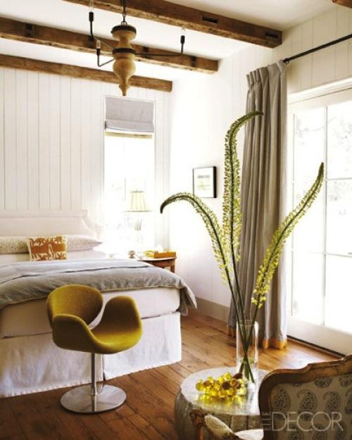 houseplant house plants plant decor style